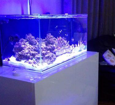 aquarium_tank_cabinet